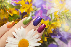 Colorful manicured. Colorful manicured nails square shape with flowers royalty free stock photography