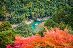 Arashiyama. Colorful of maple forest on the mountain at autumn season in Arashiyama, Kyoto, Japan. From observation view point at Senkoji temple, over hozu river royalty free stock image