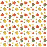 Colorful maple leafs background on white, autumn, vector Royalty Free Stock Photos