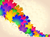 Colorful maple leaves - abstract background Royalty Free Stock Images