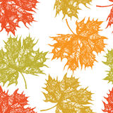 Colorful maple leaves seamless pattern Royalty Free Stock Photography