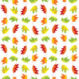 Colorful maple leaves Royalty Free Stock Photos