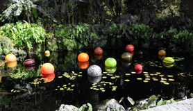 Colorful Marbles in the Pond Stock Images