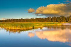 Colorful Marsh Country Netherlands Stock Photo