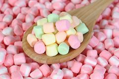 Colorful marshmallow Stock Photography