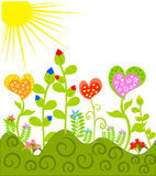 Colorful meadow Royalty Free Stock Images