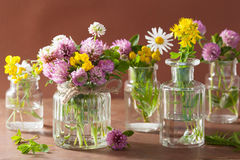Colorful medical flowers and herbs in glass jars Royalty Free Stock Photos