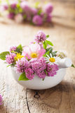 Colorful medical flowers and herbs in mortar Stock Photo