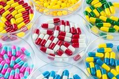 Colorful medicament in Petri Dish,  Healthcare And Medicine Stock Photo