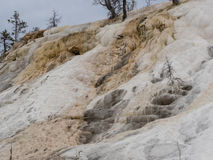 Colorful minerals at Mammoth Hot Springs Royalty Free Stock Photos