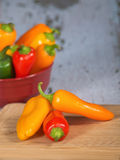 Colorful mini peppers Royalty Free Stock Photos