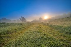 A colorful misty landscape with a view of dew-covered grass and the sun rising over the forest. Slowly rising from behind the forest. The fog is like a haze royalty free stock photography