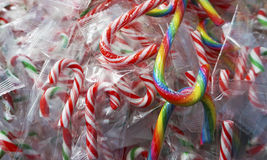 Colorful mix candy canes Royalty Free Stock Photo