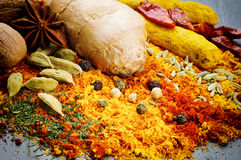 Colorful mix of different spices royalty free stock photos
