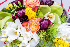 Colorful mix of flowers. May be used as background Stock Images