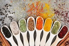 Colorful mix of herb and spice varieties stock image