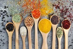 Colorful mix of herb and spice varieties: curry, coriander, turmeric, cumin, paprika, pepper, mustard, salt, thyme, cardamon, oreg stock photo