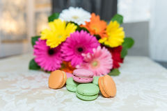 Colorful mix of macarons with a background of gerbers Royalty Free Stock Photos