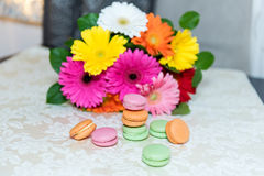 Colorful mix of macarons with a background of gerbers Royalty Free Stock Photo