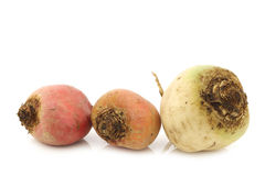 Colorful mix of red,yellow and white beets Royalty Free Stock Photos