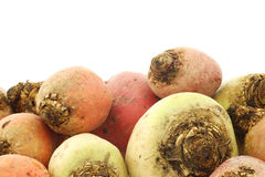 Colorful mix of red,yellow and white beets Stock Photo