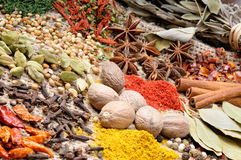 Colorful mix of spices Royalty Free Stock Photo