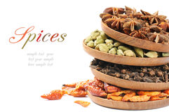 Colorful mix of spices stock image