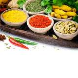 Colorful mix of spices Royalty Free Stock Images