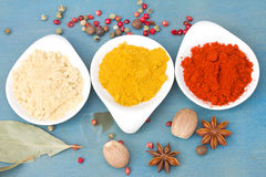 Colorful mix of spices on blue  table Royalty Free Stock Photography