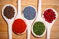 Colorful mix of spices. chopped parsley, caraway seeds Stock Image