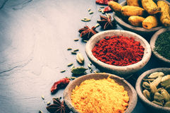 Colorful mix of spices on dark background Stock Photo