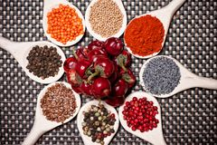 Colorful mix of spices with poppy seeds and pepper corn royalty free stock image