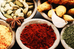 Colorful mix of spices Royalty Free Stock Photos