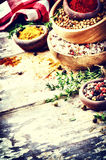 Colorful mix of various spices and herbs Royalty Free Stock Images