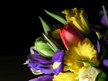 Colorful mixed bouquet 1. Bouquet of narcissus,iris and tulip royalty free stock image