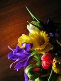 Colorful mixed bouquet 2. Bouquet of narcissus,iris and tulip stock photography