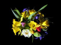 Colorful mixed bouquet 3. Bouquet of narcissus,iris and tulip stock images