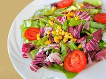 Colorful mixed salad Stock Image