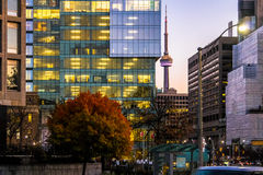 Colorful modern buildings of downtown Toronto and CN Tower at night - Toronto, Ontario, Canada