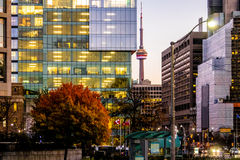 Colorful modern buildings of downtown Toronto and CN Tower at night - Toronto, Ontario, Canada stock image