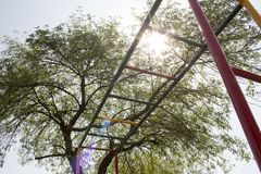 Colorful monkey bars below the sunlight royalty free stock photography