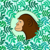 Colorful monkey in circle frame Royalty Free Stock Image