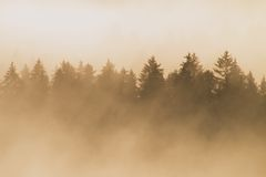 Colorful morning at the end of summer. Colorful summer morning with golden light and striped fog between hills Stock Photography