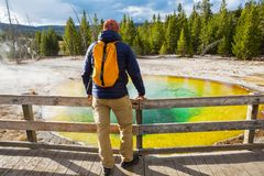 Morning Glory Pool. Colorful Morning Glory Pool - famous hot spring in the Yellowstone National Park, Wyoming, USA stock image
