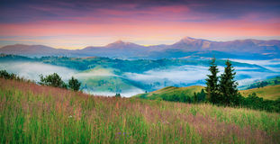 Colorful morning panorama of Carpathian mountains. Stock Photography