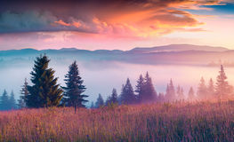 Colorful morning scene in the Carpathian mountains Stock Photos