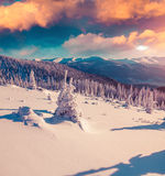 Colorful morning scene in the winter mountain. Instagram toning Royalty Free Stock Images
