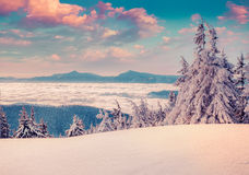 Colorful morning scene in the winter mountain. Instagram toning Royalty Free Stock Image