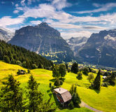 Colorful morning view of Grindelwald village valley from cablewa Royalty Free Stock Images