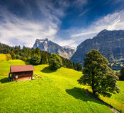 Colorful morning view of Grindelwald village valley from cablewa Stock Image
